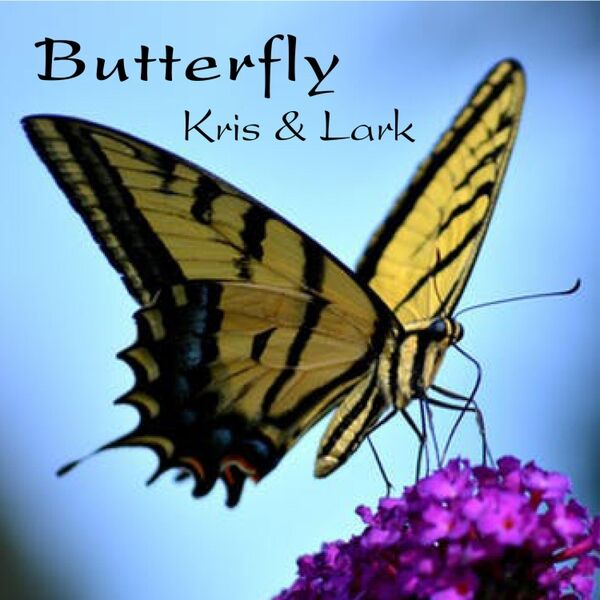Cover art for Butterfly